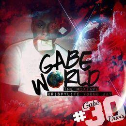 48458L - Gabeworld Cover Art