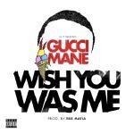 AllHipHop - Wish You Was Me (Prod 808 Mafia) Cover Art