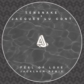 Tensnake & Jacques Lu Cont