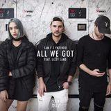 Audiomack Electronic - All We Got ft. Lizzy Land (Dim Mak) Cover Art