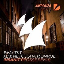 Audiomack Electronic - Insanity (POSSE Remix) - Extended Mix Cover Art