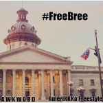 AWKWORD - AmeriKKKa Freestyle [prod. by Steel Tipped Dove] Cover Art