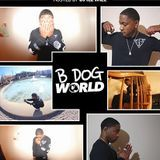 BDog1040 - BDog - 100x FT. TRUPHY Cover Art