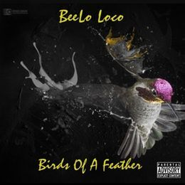 BeeLoLoco - Bird's Of A Feather Cover Art