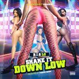B.I.G Lo Da Artist - Shake It Down Low Cover Art