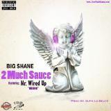 Big Shane - 2 Much Sauce