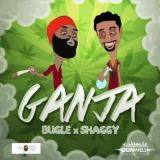 Bramkush Entertainment - Ganja Cover Art