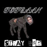 Bramkush Entertainment - Stray Dog (Raw) Cover Art