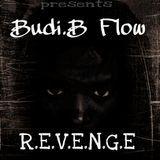 Budi.B Flow - Revenge Cover Art