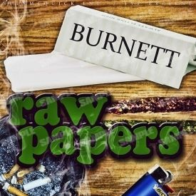 Burn$ - Raw Papers Cover Art