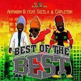 Caribbean Vibez - BEST OF THE BEST Cover Art