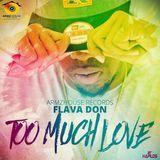 Caribbean Vibez - Too Much Love Cover Art