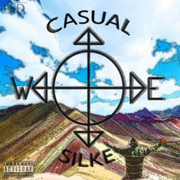 Casual D - Casual Silke Cover Art