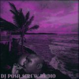 DJ POSA - DJ POSA SCREW RADIO Cover Art