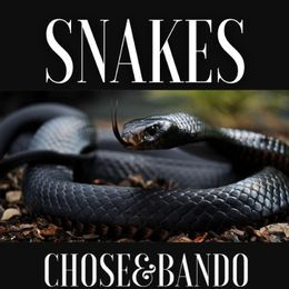 CHOSE4THEGAME - SNAKES Cover Art