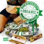 Chris Knight - Organic (Prod. Lexi Banks) Cover Art