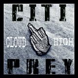 CiTiDaGod - Prey (Pray4Em Remix) Cover Art