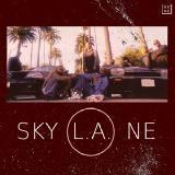D-GENE - Sky L.A.ne Cover Art