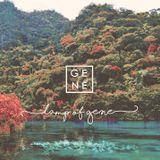 D-GENE - Lamp Of Gene Cover Art