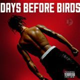 DWEST IN THE MIX - Days Before Birds Cover Art