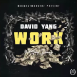 David Yang - Work Cover Art