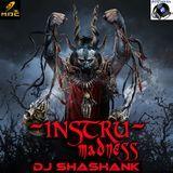 Deejey Shashank - INSTRU MADNESS(ORIGINAL MIX)DJ SHASHANK Cover Art