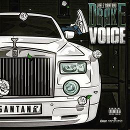Deltron - Drake Voice Cover Art