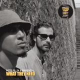 Deltron - What They Need (Dj Spinna Remix) Cover Art