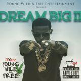 DiYoute - Dream Big II Cover Art