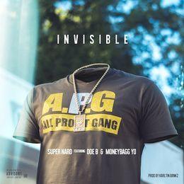 DJ Day-Day - Invisible [No DJ] Cover Art