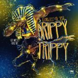 DjDrizzle - Drippy Trippy Ft Lil Spigg (Dirty)