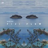 DJ Fly Guy - Fiji Flow Cover Art