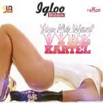 Dj-Len - VYBZ KARTEL - YOU WANT ME-SUR (RAW) Cover Art