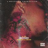 DJ Mars Kiss - Destined Cover Art