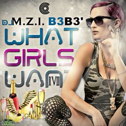 DJ M.Z.I - What Girls Want 17 Cover Art