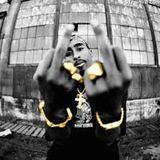 Dj Shawne - 2Pac...Thug Style (Dj Shawne Blend Nation Remix) MXS Beat Cover Art