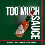 "DJ Spin ""The Vibe Setta"" - Too Much Sauce Cover Art"