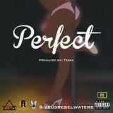 DJ Tony H - Perfect Cover Art