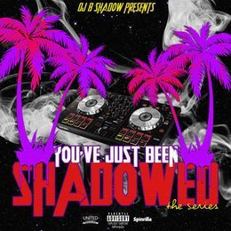 DJBSHADOW - DJ B SHADOW PRESENTS: YOU'VE JUST BEEN SHADOW-ED THE SERIES  Cover Art