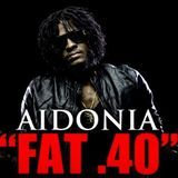 DJJUNKY - Fat 40 (Mavado Diss) (Exclusive Preview) Cover Art