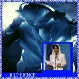 DJRO504 - PRINCE RIP MX DJ RO vs RO WATTS Cover Art