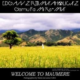 EDGANZ RƎMIXΛH☢LICXZ! - EdGanz RƎmixah☢licxz!! - Gemu Fa Mi Re+MIX Cover Art