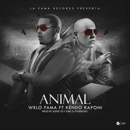 evercfm - Animal Cover Art