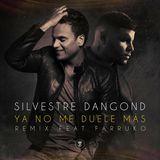 Farruko - Ya No Me Duele Más (Official Remix) Cover Art