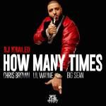 FlyTunez.com - How Many Times Cover Art