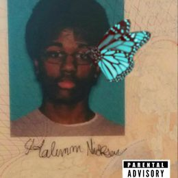 HALIMM. - BUTTERFLY DEMO Cover Art