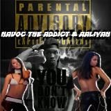 Havoc The Addict - You Don't Know Cover Art
