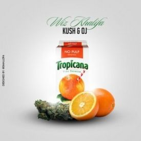 Wiz Khalifa - Kush And OJ  Vol 3