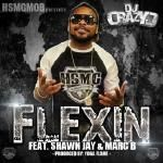 HSMGMOB - Flexin Cover Art