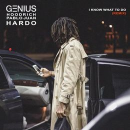 GENIUS - I Know What To Do (Remix) Cover Art
